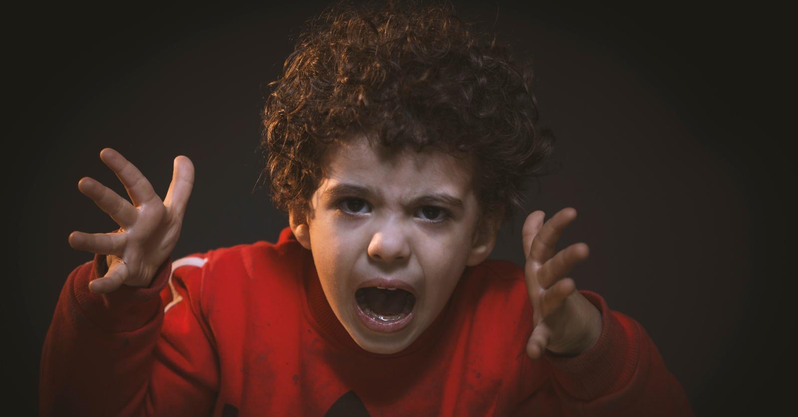 11 Dicas Para Lidar Com Crianças De Espírito Forte – [Nº 7] Não Tem De Gostar de Tudo
